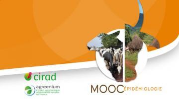 Bases en épidémiologie des maladies animales et zoonotiques