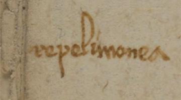 The History of Medieval Medicine Through Jewish Manuscripts