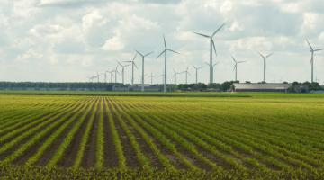 Global Sustainable Energy: Past, Present and Future