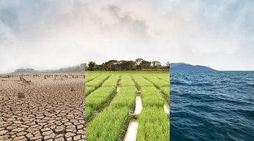 Tackling Environmental Challenges for a Sustainable Future