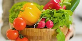 营养和健康——第1部分:大量营养素和营养过剩