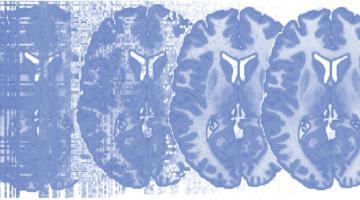 Principles of fMRI 2