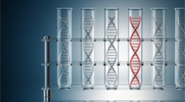 DNA Sequences: Alignments and Analysis