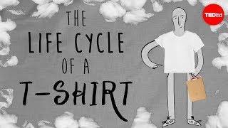Le cycle de vie d'un t-shirt