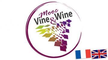 Vine & Wine
