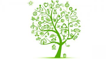 How Green Is That Product? An Introduction to Life Cycle Environmental Assessment