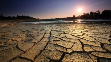 Drainage in Agriculture: controlling water and salt levels in the soil