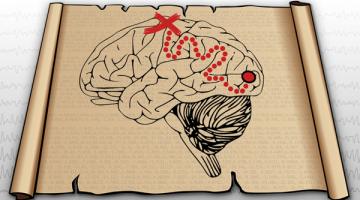 Exploring Neural Data