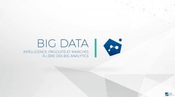 Big Data : Intelligence, Produits et Marchés à l'ère des Big Analytics