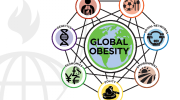 Systems Science and Obesity