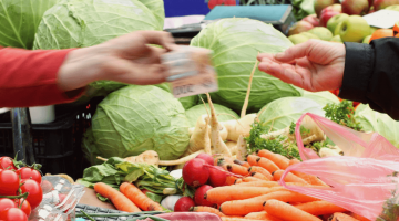 Understanding Agribusiness, Value Chains, and Consumers in Global Food Systems