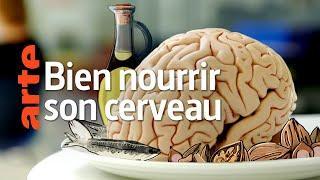 Comment notre alimentation influence notre santé mentale - bien nourrir son cerveau