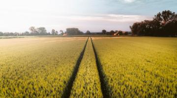 Qu'est-ce que l'agroécologie