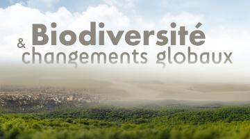 Biodiversité et changements globaux
