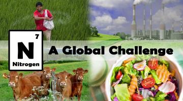 Nitrogen: A Global Challenge