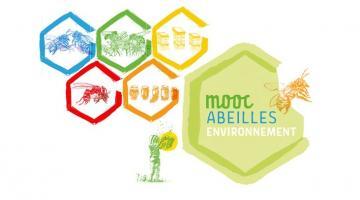 MOOC Abeilles et environnement
