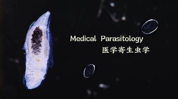 Medical Parasitology | 医学寄生虫学