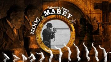 Marey : l'Art et la Science du mouvement
