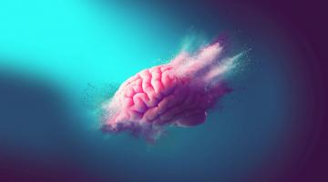 Système 1, système 2 - Les deux vitesses de la pensée