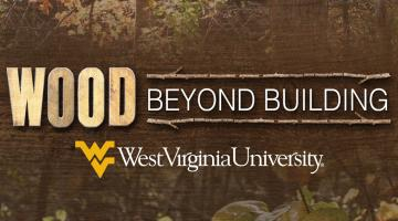 Wood Science: Beyond Building