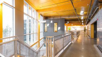 Le matériau bois et la carboneutralité des bâtiments