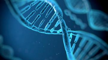 Cancer in the 21st Century: the Genomic Revolution