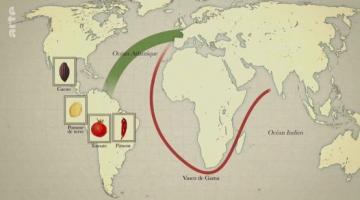 Alimentation, la mondialisation dans nos assiettes ?