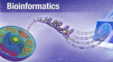Bioinformatics: Introduction and Methods 生物信息学: 导论与方法