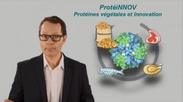 ProtéiNNOV : Protéines végétales et Innovation