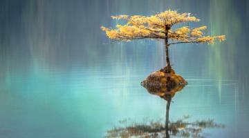 Comment apprendre à garder son calme en toutes circonstances?
