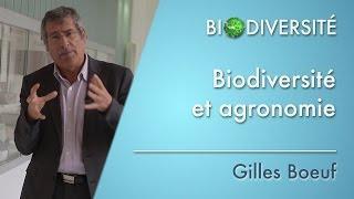 E.Hainzelin : Biodiversité et agroéconomie : l'agroécologie