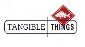 Tangible Things: Discovering History Through Artworks, Artifacts, Scientific Specimens, and the Stuff Around You