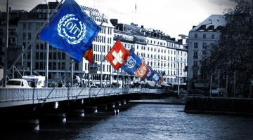 International Organizations Management