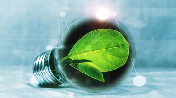 From Fossil Resources to Biomass: A Business and Economics Perspective