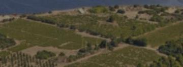 Alle origini della civiltà  mediterranea: archeologia  della città dal Levante  all'Occidente - III-I millennio a.C.