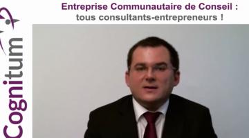 Entreprise communautaire de conseil : tous consultants-entrepreneurs !