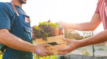 Le crédit à l'agriculture, un outil-clé du développement agricole
