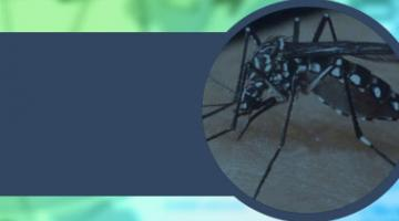ETV: Paludismo, Dengue y Chikungunya
