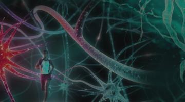Advanced Neurobiology II
