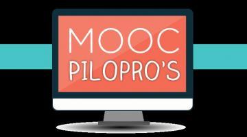 Pilotage des organisations et processus métiers - PILOPRO's