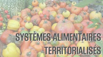 Acteurs, leviers, outils pour mener les transitions du système alimentaire