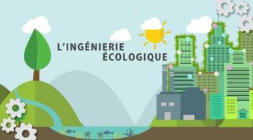 Ingénierie écologique