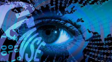 Using Open Data for Digital Business