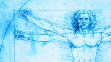 解密肢体:上肢的解剖学