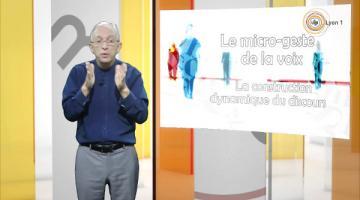 Insignis : Gestes et postures en enseignement