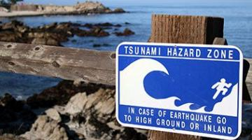 Tsunamis and Storm Surges: Introduction to Coastal Disasters