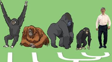 人类社会性的演化:探寻人类社会行为的起源