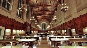 Managing a Diverse and Inclusive Workplace for Public Libraries