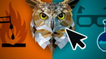 """Lab Safety: The Interactive Game of """"Don't Endanger the Owls"""""""