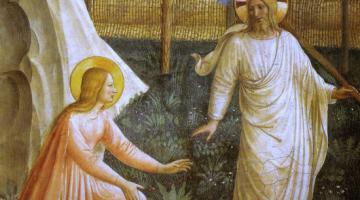 Une histoire biblique des origines - Dieu a-t-il raté sa création ?
